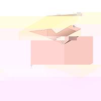 BH-Verlängerer peach 2-reihig